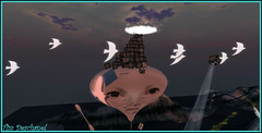 Ils passent et repassent ... (Tim Deschanel) Tags: life two fish bird art rose landscape tim beth lot sl story fate angry second about vol nuage paysage exploration oiseau inevitability deschanel envol cariacou borchovski