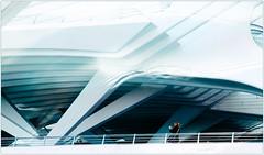 """Fascination Calatravienne 2"", Gare des Guillemins, Lige, Belgium (claude lina) Tags: station architecture belgium belgique gare santiagocalatrava lige wallonie provincedelige garedesguilleminslige"