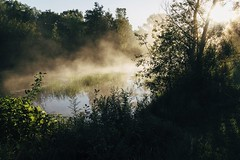 It Means Everything to Me (davelawrence8) Tags: morning summer usa mist nature fog mi rural sunrise landscape quiet commute concord 2015 vsco canoneosm