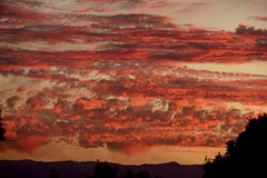 Springbrook Sunset (armct) Tags: sunset queensland goldcoast springbrook hinterland