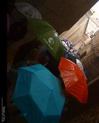 Intentant fer net d'aquest recull de Temps de Flors... (Felip Prats) Tags: umbrella girona catalunya paraguas paraiges tempsdeflors2016