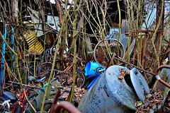 chaos (riccardo nassisi) Tags: auto abandoned car pc rust ruins fiat rusty scrapyard wreck scrap piacenza wrecked ruggine relitto rottame travo epave abbandonata