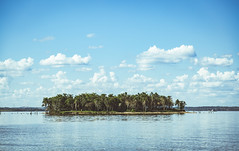 Palm Island. (Pablin79) Tags: light sky water argentina colors clouds river island afternoon outdoor misiones posadas