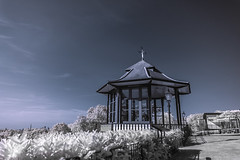 Horniman Museum. (blackwoodse6) Tags: uk blue england white london ir bluesky infrared foilage southlondon foresthill falsecolour southeastlondon se23 hornimanmuseum hoyar72 720nm sonya700
