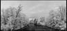 Fish Creek No. 4 (Dave Blinder) Tags: landscape ir olympus cny infrared newyorkstate 2016 m43 epl2 tamron14150mmdiiii daveblindercom p6027493pano fishcreekannsville