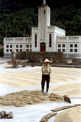 32-245 (ndpa / s. lundeen, archivist) Tags: rural village people nick dewolf nickdewolf 32 reel32 color photographbynickdewolf 1970s 1972 fall film 35mm winter republicofchina taiwan taiwanese eastcoast easterntaiwan hualien hualiencounty easterncoast rurallife unidentified town building architecture grain rice woman hat conicalhat dryingrice tool hoe rake threshing ricethresher machine thresher china chinese 1973