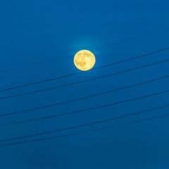 Cheese Slicer Moon (Kimberley Hoyles) Tags: blue sky moon beautiful lines yellow cheese beaty stunning bluehour lovely nikond3200