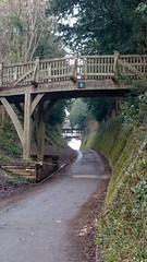 Two bridges (Graham Dash) Tags: bridge bridges surrey lanes polesdenlacey greatbookham cf15 2015pad