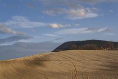 Golden Hills at Conero Regional Park, Ancona, Italy (PietroPosacki) Tags: blue sky italy sun nature clouds landscape gold countryside italia wave hills fields conero marche ancona