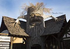 Tree face Broomhilde 8649PatLam (Studio5301) Tags: costumes festival kids children drums kilt bellydancer drummer faire clan renaissancefaire chld arizonarenaissancefestival fairycostumes studio5301 festivalsinphoenix patricialam patricialamphotographycom