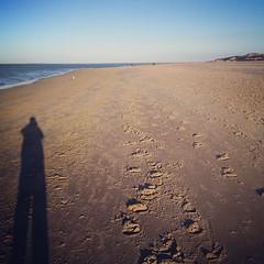 Rise and Shine #visitholland #renesse #beach (stimorolthy) Tags: beach renesse visitholland uploaded:by=flickstagram instagram:photo=662120788394086539577147