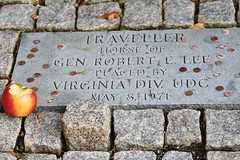 Traveller's Grave (Blue-Eyed Kentucky) Tags: travel horses grave virginia churches historic traveller robertelee lexingtonva leechapel washingtonleeuniversity