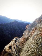 Great smokey mountain (dylan_horst) Tags: above travel trees winter sky mountain mountains tree fall love beautiful rock clouds fun climb us high great roadtrip hike adventure explore smokey