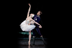 Your reaction: Swan Lake in cinemas 2015