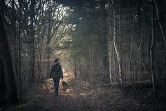 Forestwalk (derScheuch) Tags: forest wald chrissi rumo wildenloh carlzeissbiotar