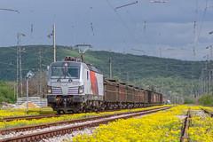 Botev transit (BackOnTrack Studios) Tags: train siemens rail db bulgaria trial freight tests schenker homologation botev vectron