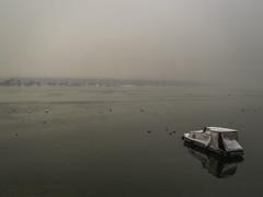 Danube (Beba____) Tags: winter home birds river boat belgrade beograd danube zemun dunav reka kej zemunski