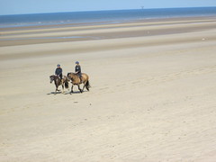 Formby Point Riders (Mr-NHW) Tags: england horse beach point riding rider merseyside formby sefton