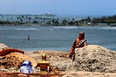 IMG_22711 (riverrock777) Tags: sea costa beach rock toy island coast mar seaside day exterior view outdoor sunny playa shore r2d2 vista da isla roca chewbacca c3po juguete orilla soleado