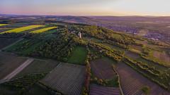 Westerberg / Ingelheim (ChrisTalentfrei) Tags: sun tower landscape sonnenuntergang sundown dusk landscaping 4 wideangle fisheye phantom sonne westerberg drone ingelheim bismarckturm dji drohne nordauslufer