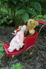 Samantha's Pram: Teddy and Clara (Foxy Belle) Tags: doll american girl samantha flower garden outside ag 18 inch historical beforever meet pink peony toy teddy pram stroller vintage original sam victorian lace frilly