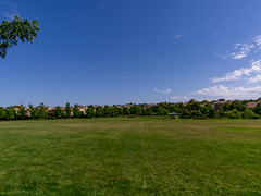 EDH_Park_Serrano_BellaTerraPark_07 (david_c_reed) Tags: park stockphotos eldoradohillsca realestatephotography