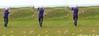 P1190593_aa (O Suave Gigante) Tags: estuary wexford coastalerosion wexfordharbour curracloe hookpeninsula hookheadlighthouse ballinesker sladeharbour northslob sladecastle ravenwoodnaturereserve theravennaturereserve ravenpointloop laffanfamily 1860sfaminereliefworksprogramme caledonianlasswexford uiscebeathacork theburrowcourserosslare
