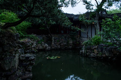Humble Administrator's Garden (Melissa Boodoo) Tags: world china old trip travel blue trees vacation people plants history nature water architecture contrast river garden dark outside outdoors boat town pond workers asia stream moody village outdoor exploring paddle tourist wanderlust explore boating traveling southeast waterway bold anicent viberant