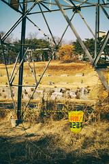 Ephemere 56 (lunecoree) Tags: danger 35mm canon eos horizon tomb sigma korea paysage coree extrieur ligne tombe 30d  lectrique  pylne  cble bta siheung