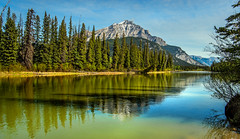 mountain reflections along bow river - banff (canada - AB) 4 (Russell Scott Images) Tags: canada mountains reflections nationalpark rocky alberta banff bowriver