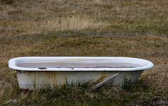 Bathtubs and Barbed Wire (Steve Taylor (Photography)) Tags: newzealand water field grass wire bath rust farm canterbury tub nz southisland weathered bathtub southernalps barbed corrosion troth
