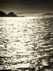 charting a path (birdcloud1) Tags: ocean light sea sunlight monochrome landscape coast sailing shine navigation plimmerton newzealandlandscapes canonsx60hs amandakeogh sx60hs amandakeoghphotography birdcloud1