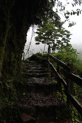 Catarata del Toro (elisecavicchi) Tags: shadow cloud costa mist storm green rain fog del stairs america fence dark season day arch path walk central steps rail overcast rica trail melancholy toro catarata obscure poas bajos