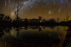Reflections (Astronomy*Domine) Tags: yornaning dam startrail star trail longexposure night milkyway reflection astrophotography astronomy astro fisheye peleng canon 7d trees westernaustralia perth winter