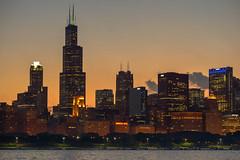 Chicago Loop - Night (alexgeorgeny) Tags: ocean sunset summer sun lake chicago green tower water grass fog skyline skyscraper spring nikon sears chase lightpole d3200 d5100