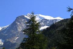 Champoluc. (coloreda24) Tags: italy mountain alps canon europa europe italia alpen alpi castor aosta champoluc valledaosta 2011 castore valdayas canonefs1785mmf456isusm canoneos500d alpipennine gruppomonterosa