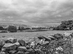 To Keighley (tubblesnap) Tags: bw white black wall landscape scenery fuji yorkshire drystone lightroom keighley silsden steeton xs1 tubblesnap