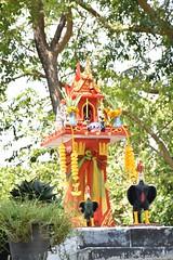 _DSC0794 (lnewman333) Tags: sea thailand island coast seasia southeastasia rooster kohsamed spirithouse kosamet cockerel kosamed gulfofthailand aowongdeuan