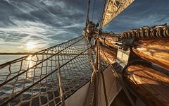 Kiel week 2016 - Maritime impressions (Stefan Sellmer) Tags: sunset summer water germany sailing outdoor bluesky balticsea kiel schleswigholstein kielweek thorheyerdahl kielfjord