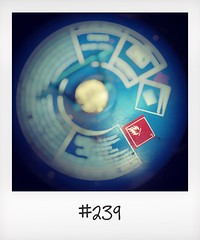 """#DailyPolaroid  of 24-5-16 #239 • <a style=""""font-size:0.8em;"""" href=""""http://www.flickr.com/photos/47939785@N05/27940368960/"""" target=""""_blank"""">View on Flickr</a>"""