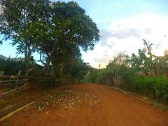 uhguigh (Niki_Ta_1998) Tags: nature village manipur northeastindia chakpikarong charongching analvillage