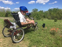 Papa the Photographer (OakleyOriginals) Tags: flowers red summer oklahoma dad tricycle photograph papa parkinsons indianpaintbrush recumbenttricycle selfiestick