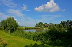Landscape Forest (JaapCom) Tags: jaapcom landscape landschap landschaft water dutch holland netherlands clouds natural naturel nature