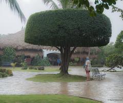 Rain in paradise (Nick Doronin) Tags: travel vacation rain dominican tropical sosua outdor