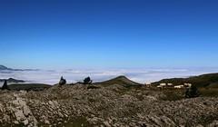 Estives tout en haut au dessus de la mer de nuages, (escaledith) Tags: lapierresaintmartin pyrnes 64 france montagne landscarpe clouds randonne vaches bovins estives
