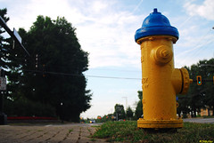 I might be part dog. (jrbutler90) Tags: digital photography nikon d200 kodachrome fire hydrant dog dreams yellow blue