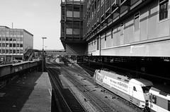 Wenn ich mal gross bin (micagoto) Tags: station br adler bahnhof sbb db basel 101 25 centralstation baselsbb 071 mrklin werbelok 1010719 101071 hndlerinitiative mrklinlok wirlebenmrklin