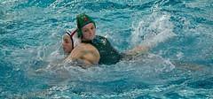 O3072696 (roel.ubels) Tags: sport utrecht bears polar waterpolo krommerijn eredivisie 2015 topsport uzsc