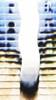 00n6#MAD#PHOTOSHOP# (alainalele) Tags: camera photoshop polaroid kodak internet creative gimp commons modified bienvenue cheap licence presse ulead bloggeur paternité alainalele lamauvida
