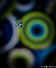 Hidden Worlds (_Natasa_) Tags: world blue macro reflection green art nature water closeup canon waterdrop colours dof bokeh drop droplet inside kap voda canoneos7d canonef100mmf28lmacroisusm natasaopacic natasaopacicphotography
